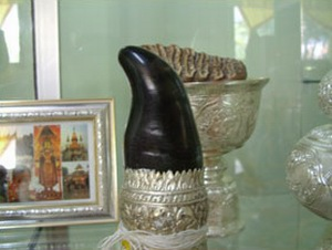 A black Rhino horn mounted in a specially made silver mount.